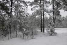Выездной лагерь в Карелии 2012 год