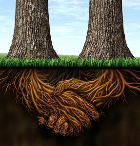 Деревья с корнями руками