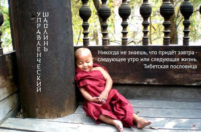 Цитата_Будда_700_n